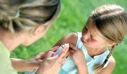 Sivrisinekleri Uzaklaştırmanın Doğal Çözümleri