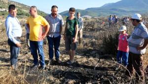Alevler, Yırca'daki 'Zafer Ağaçları'nı Küle Çevirdi (2)