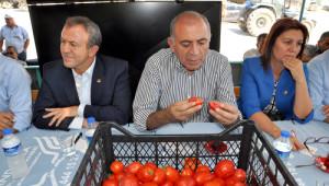 CHP'li Gürsel Tekin Çiftçiyi Dinledi, Çözüm Sözü Verdi