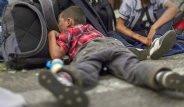 Suriye'de İç Savaştan Kaçan Göçmen Çocuklar ve Hikayeleri