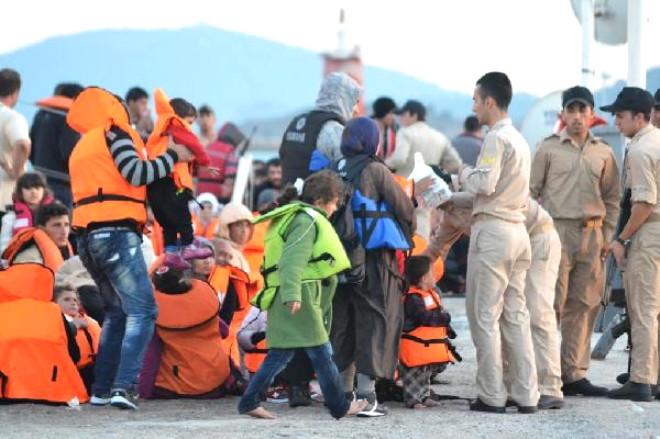 Ayvalık'ta 187 Kaçak Yakalandı