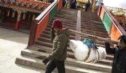 Çin'de İnsan Ölülerini Akbabalara Yediriyorlar