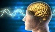 Beyni Aptallaştıran Yiyecekler