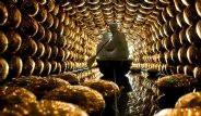 Yerin 1000 Metre Altındaki Japon Laboratuvarı