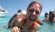 Cayman Adaları'nda Vatozlarla Yüzmek Cesaret İstiyor