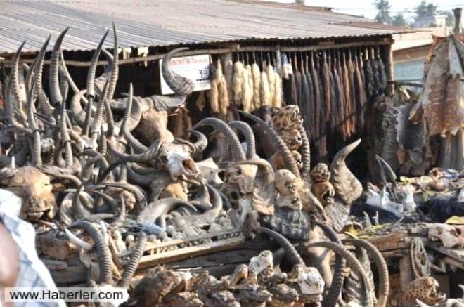 Afrika'nın Voodoo Büyücülerinin Korkunç Yöntemleri