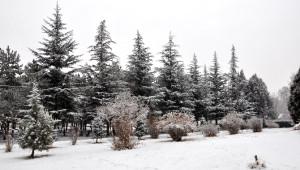 Sorgun'da Kar Yağışı Kazaları Beraberinde Getirdi