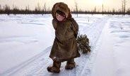 Kuzey Kutbu'nda Tek Amaçları Yaşamak Olan Halk: Nenetsler