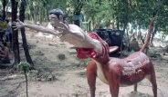 Budistler Parkı Cehenneme Dönüştürdü