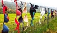 Yeni Zelanda'da Binlerce Kadın Tel Örgüye Sütyenini Asıyor