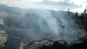Türkiye-Gürcistan Sınırında Yangın