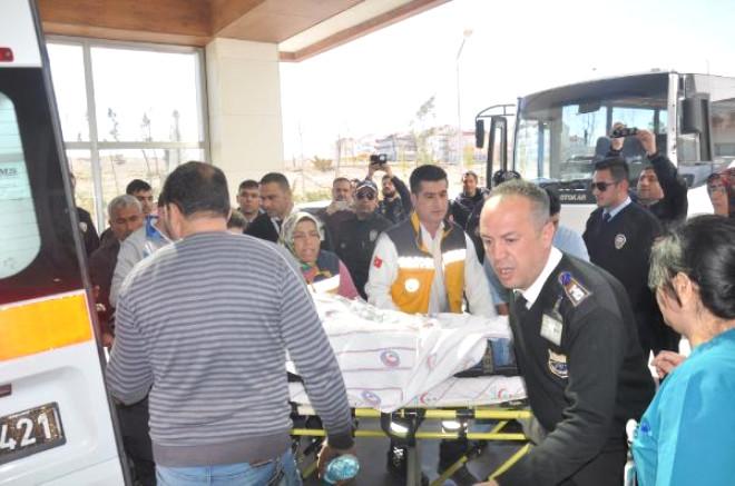 Karaman'da Köpek Kavgası: 1 Ölü, 1 Yaralı