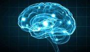 Beyin Yaşlanmasının 16 Sebebi