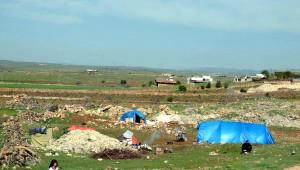 Nusaybin'deki Operasyondan Kaçan Ailenin, Midyat'ta Çadırda Yaşam Savaşı