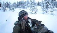Şehirden Kaçan Genç Kız 85 Köpeğiyle Yaban Hayatı Yaşıyor