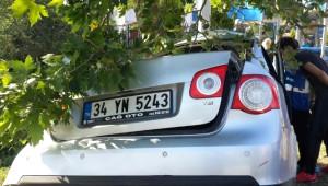 Lüks Otomobil Ağaca Çarptı: 1 Ölü, 1 Yaralı