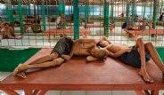 Kan Donduran Görüntü! Akıl Hastaları Aç ve Zincire Vurulmuş