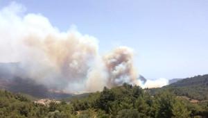 Yangın Kumluca'dan Sonra Turizm Noktası Adrasan'a Yayıldı