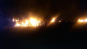 Nusaybin'deki Bagok Dağı'nda Yangın