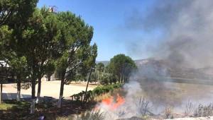 Milas'ta Yangın