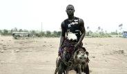 Afrika'nın Vahşi Evcil Hayvanları Dehşete Düşürüyor