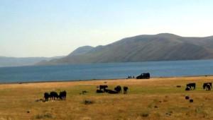 Taşlıçay ile Tuzluca Arasındaki Balıklı Göl'de Hedef Eko Turizm