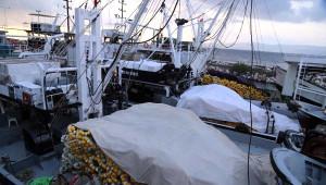 Ereğlili Balıkçılar 'Vira Bismillah' ile Sezonu Açtı