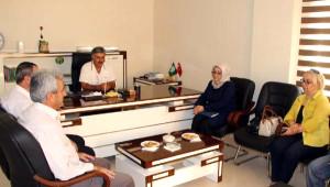 AK Parti Genel Başkan Yardımcısı Alkış: Nusaybin İçin 2 Milyar Kaynak Ayrıldı