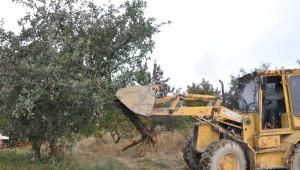 Çivril'de Ürünü Para Etmeyen Elma Üreticileri Ağaçları Kökünden Söküyor
