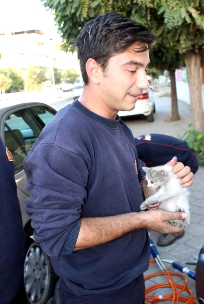 İtfaiyeden Yavru Kedi Operasyonu
