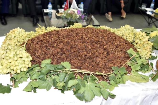 Kuru Meyve Tanıtım Grubu, Güney Kore'de Tanıtım Atağında