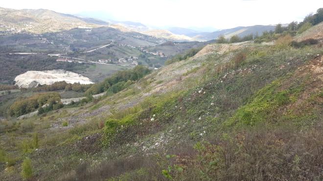 Yığılca'da Orman Rehabilitasyon Çalışmaları