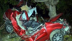 Ağaca Çarpan Otomobilin Sürücüsü Öldü