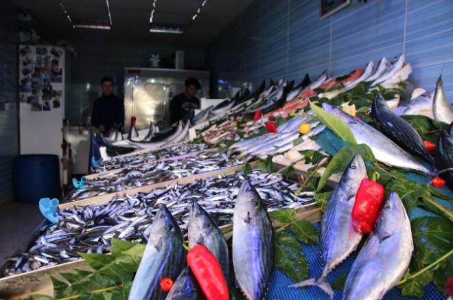 Bilecik'te Balık Fiyatları Cep Yakıyor