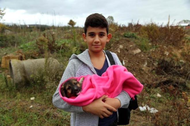 Rögara Düşen Köpek Yavrusunu İtfaiye Kurtardı