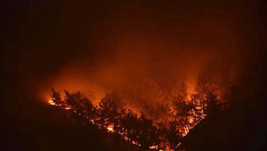 Tokat'ta Orman Yangını (2)