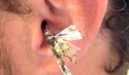 Kulağından Böcek Çıkan 10 Kişinin Yaşadığı Acı Deneyim
