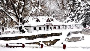 Seydişehir'de Beyaza Bürünen Kuğulu Park'ta Kartpostallık Fotoğraflar