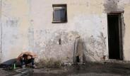 Fotoğraflarla: Sırbistan'da Mahsur Kalan Mülteciler
