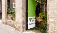 Londra'daki İçi Yemyeşil Kiralık Evden 12 Fotoğraf