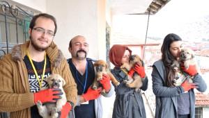 Yozgat'ta Hayvan Koruma Ekibinden Örnek Yardım