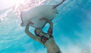 Denizde Korkusuzca Fotoğraf Çektiren