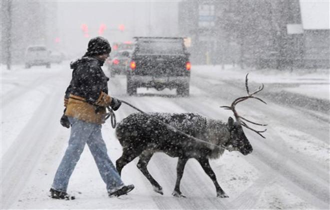 Alaska, ABD