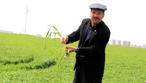 Dedaş, 4 Bin Çiftçinin 70 Milyon Lirasına Bloke Koydu' İddiası