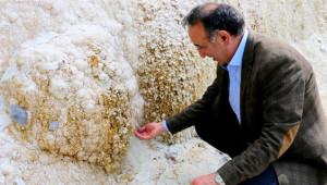 Giresun'un Saklı Harikası Kuzalan Tabiat Parkından 14 Kare