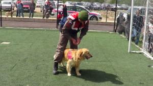 Çocukların Jandarmanın Arama Kurtarma Narkotik Köpeklerine İlgisi