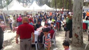 Kırıkhan'da Ciğer Festivali