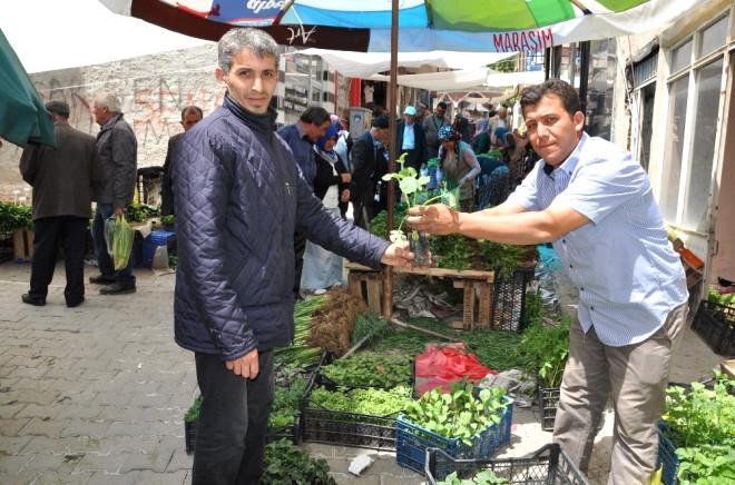 Simav'da Organik Sebze Fidesi Pazarı