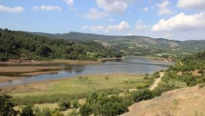 Çanakkale'de Altın Madeni Tepkisi