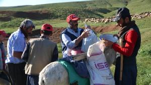 Yüksekova'da Çobanlar Dağda İftar Sofrası Kuruyor
